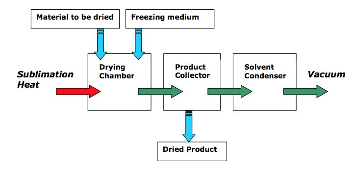 The Future of Freeze Drying